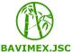 Bamboo Viet Import Export