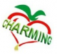 Charming Industrial Trade Co., Ltd